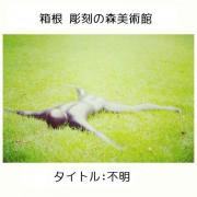 HakoneChokokuNoMori