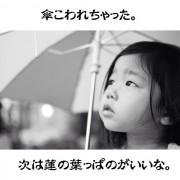 sara_hasunokasa